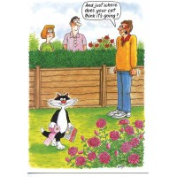 TOILET TRAINED CAT HUMOUROUS BIRTHDAY CARD RAINBOW CARDS BY LING